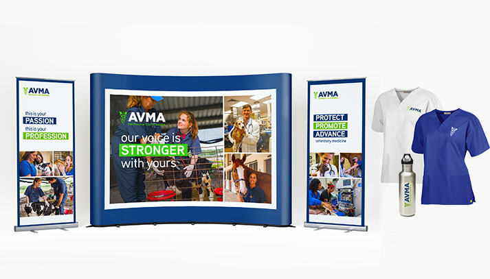 AVMA Launch